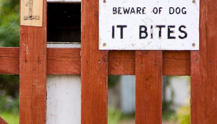 Beware of Dog Bites - Joplin, MO